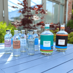 70cl Gin Bundle 2 bottles 4 FREE tonics and FREE Delivery